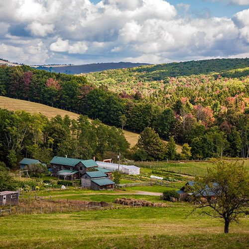 Allegheny Mountain Institute Open House
